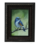 Original Oil Painting (Himalayan Blue Tail}
