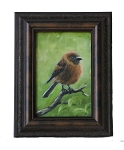 Small Round Bird (Original Oil Painting)