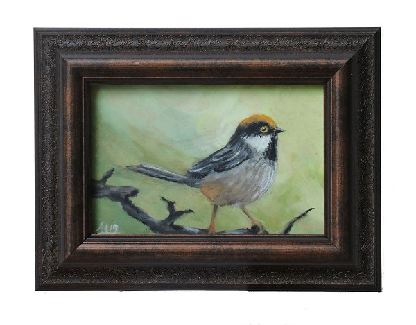 Small bird ( White Cheeked Bushtit) Original Oil Painting